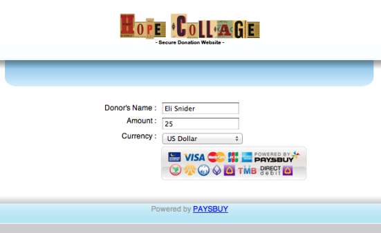 Step One: Enter your name and donation amount